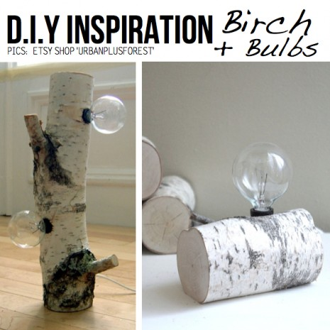 birch-bulbs