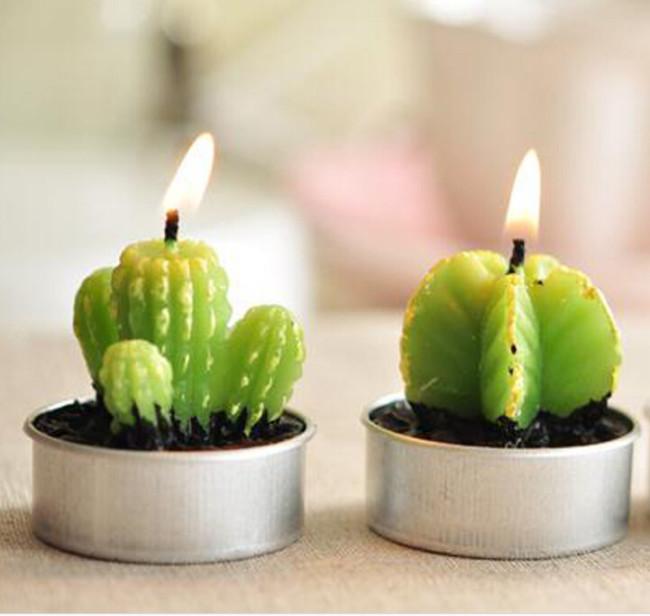 minicactusFree-Shipping-Rare-New-Mini-Cactus-Candles-Plant-Decor-Home-Table-Garden-6pcs-lot-kawaii-home