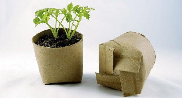 Ideas-para-reciclar-rollos-de-papel-higienico