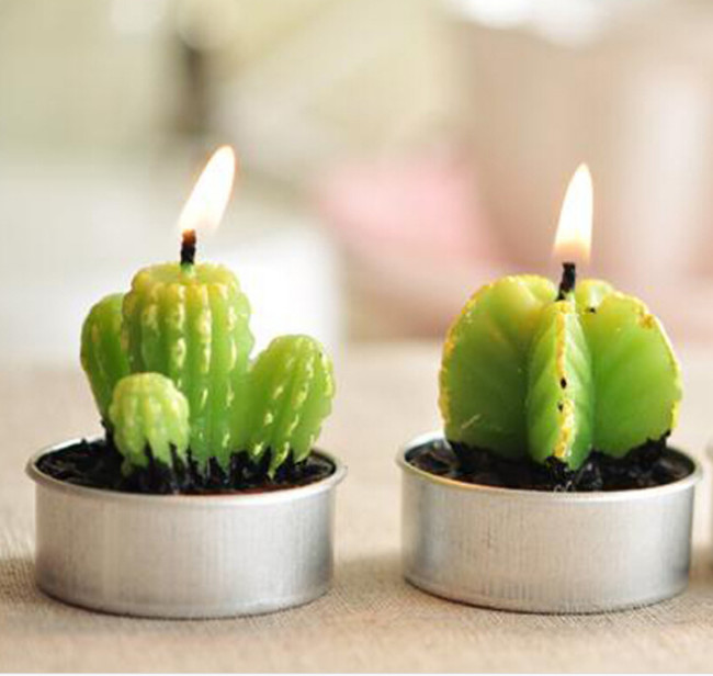 minicactusFree-Shipping-Rare-New-Mini-Cactus-Candles-Plant-Decor-Home-Table-Garden-6pcs-lot-kawaii-home