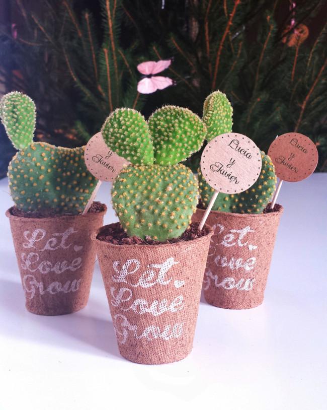 minicactusdetalles_para_invitados_cactus_maceta_regalos_di_oui_bodas4_1024x1024
